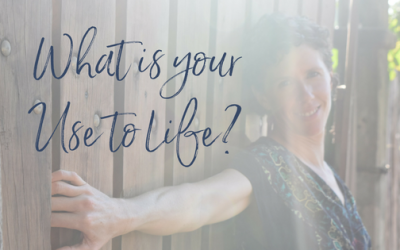What is Your Use to Life?